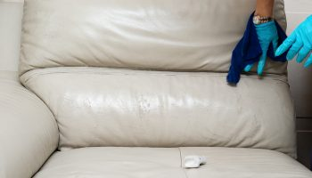 lady cleaning leather sofa with soapy sponge